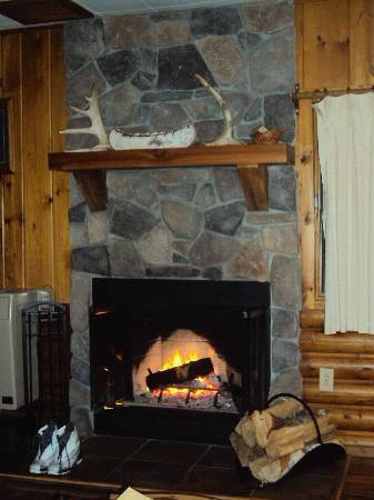 Bearskin Lodge : Cabin Living room