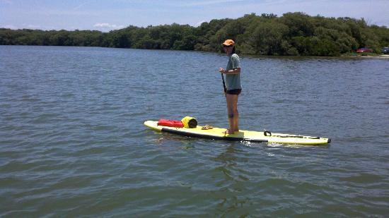 Urban Kai Stand-Up Paddleboarding : Fort Desoto