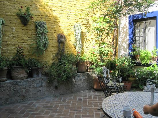 Casita de las Flores : The courtyard