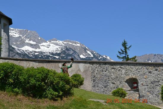 Werfen, ออสเตรีย: Falconer Holding His Bird