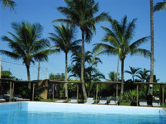 Strand Hotel: coqueiros