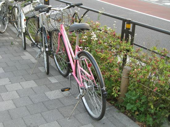 Tokyo Bicycle Tour: My pink bike:  Fit right in in Harajuku!