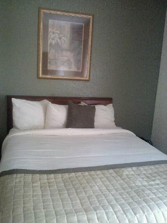 Clarion Inn & Suites : Best bed in town!  Quality mattress (2 queens) and comfortable room with lovely decor!