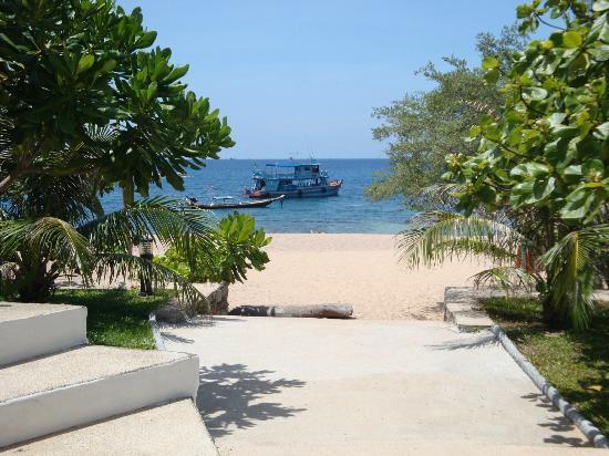 Black Tip Diving & Water Sports IDC Resort: Aussicht von der Tauchschule zum Strand