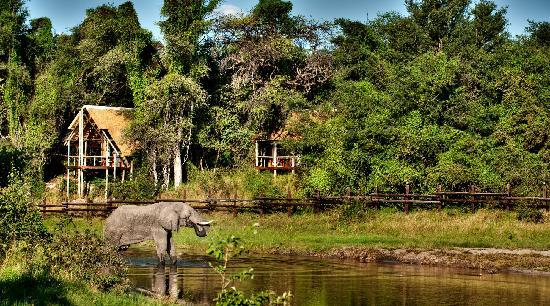 Savute Safari Lodge : The Savuti channel started flowing again about three years ago. Its course takes it right in fro
