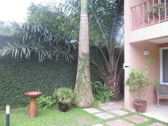 Urban by CityBlue Kampala, Uganda: Ivy covered wall, birdbath, palms and rooms facing the pool.