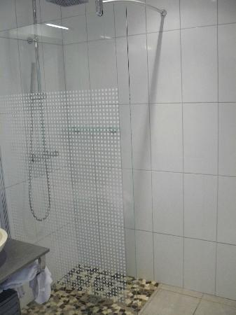 Hotel-Restaurant Le Regal: Shower