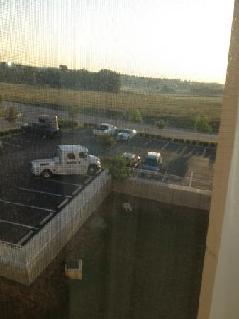Fairfield Inn & Suites Lexington North: View from our room.