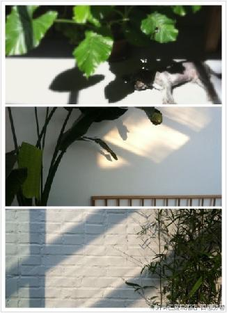 Beijing Wohkoon Hostel-Nan Luo Gu Xiang Branch: tea shadow & sunshine
