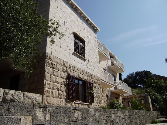 Villa Radovic : house