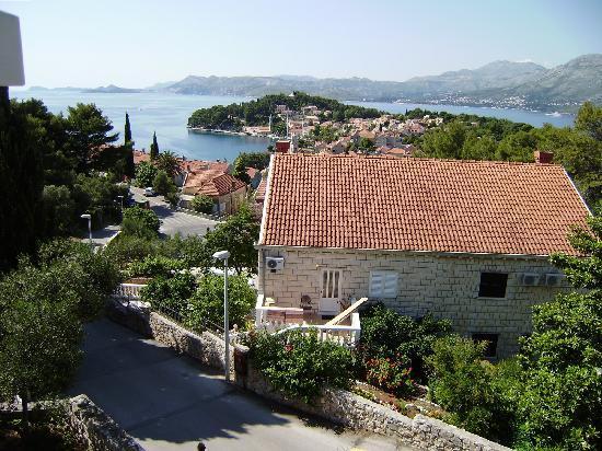 Villa Radovic : sea view
