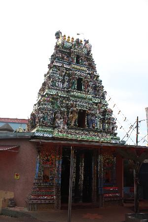 ‪Arulmigu Sri Rajakaliamman Glass Temple‬