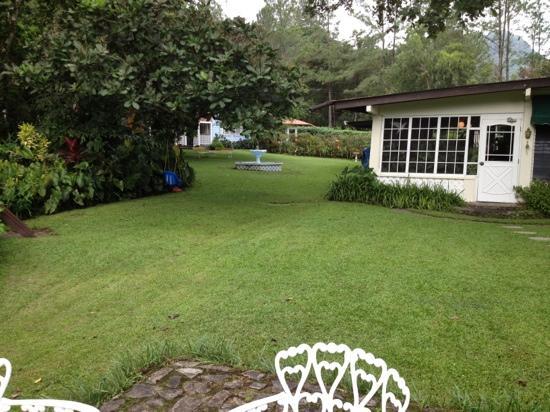 Park Eden Bed & Beakfast: Los jardines