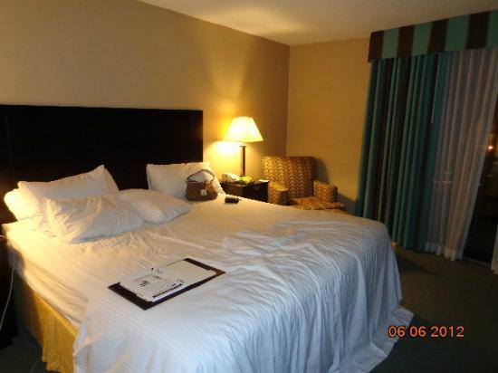 Radisson Hotel Cincinnati Riverfront : room 5
