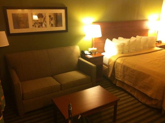 Quality Inn Flamingo: bed and sofa