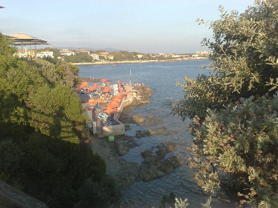 Bagno Conchiglia Castiglioncello : Bagno la conchiglia in pineta picture of hotel leopoldo