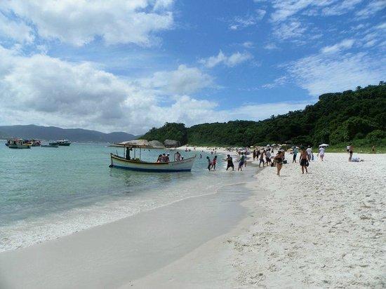 Campeche island: Barcos pescadores arribando a la isla