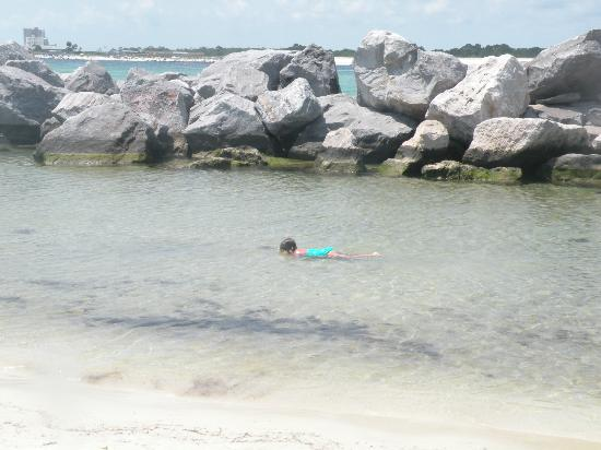 Shell Island: Shallow and calm- my smallest child looking at the fish.