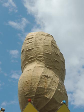 World's Largest Peanut : Looks very authentic