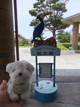 Unomisaki : 鵜の岬
