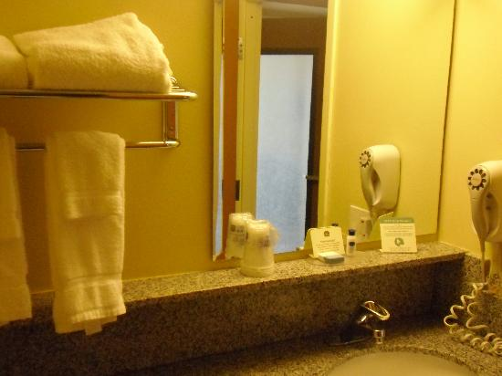 BEST WESTERN PLUS Navigator Inn & Suites: Bathroom and Blow Dryer