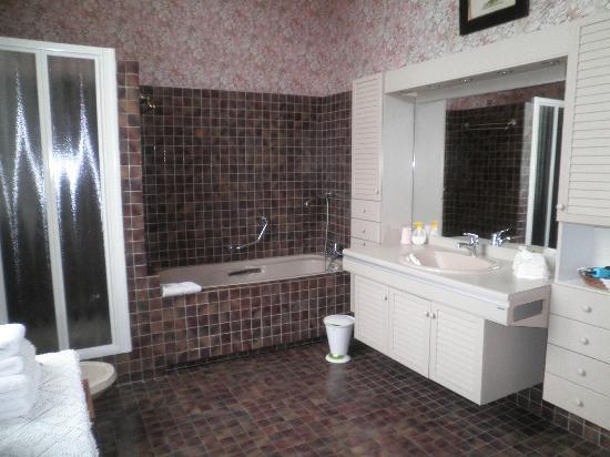 Domaine de l'Oie Rouge: salle de bain