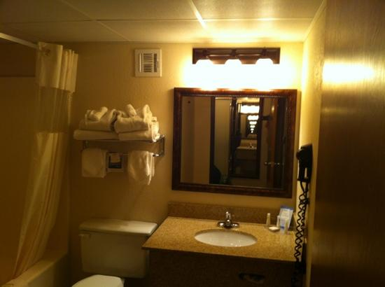 Baymont Inn & Suites Branson: bathroom 303