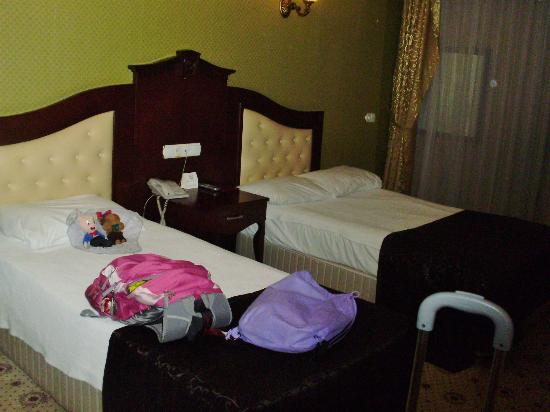 Ankara Royal Hotel : 2 twin beds for a single person