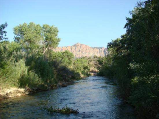 Canyon Vista Lodge - Bed & Breakfast: Virgin River (accessed from the back yard)