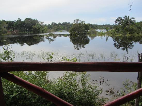 Amazon Turtle Lodge: Blick vom Balkon mittig