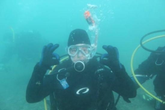 Dive Jersey: Diving photo