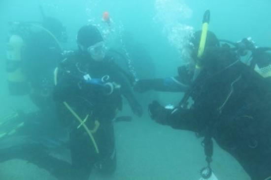 Dive Jersey: Diving photo 2