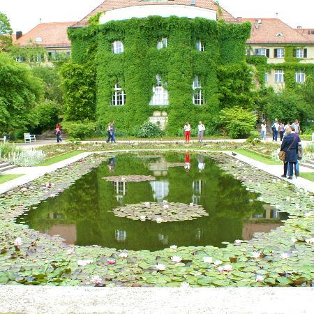 Botanischer Garten Muenchen-Nymphenburg: Lily pond.