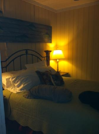 "Atlantic Street Inn : the ""back porch"" room"