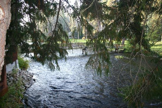 Metolious River Lodges: View From Dragonfly Deck