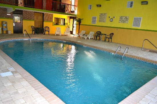 Quality Inn: Indoor heated pool with hot tub.