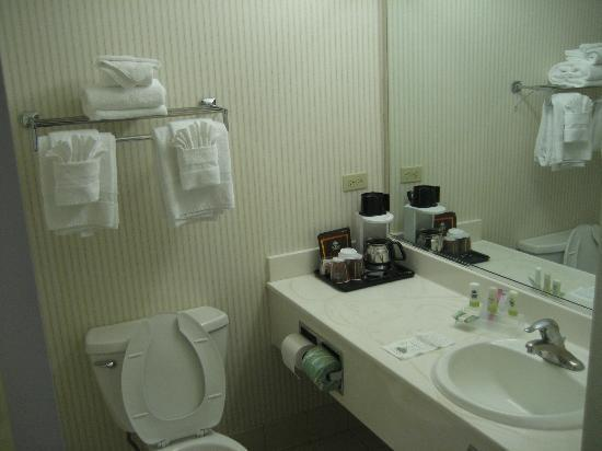Country Inn & Suites By Carlson, Chicago O'Hare South : 4