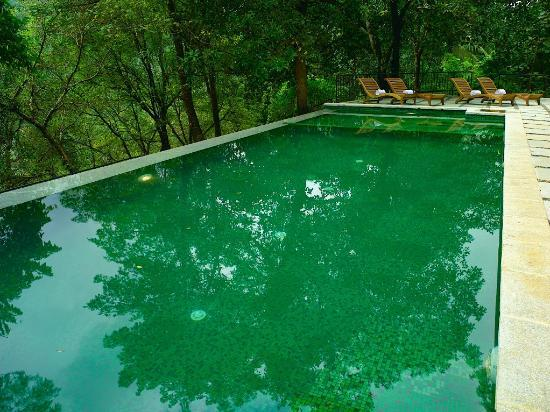 Swimming Pool In Rainforest Resort Facing The Waterfalls Picture Of Athirappilly Waterfalls