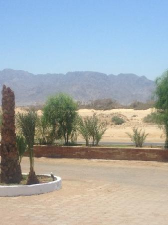 Swisscare Nuweiba Resort Hotel: view from reception onto Sinai