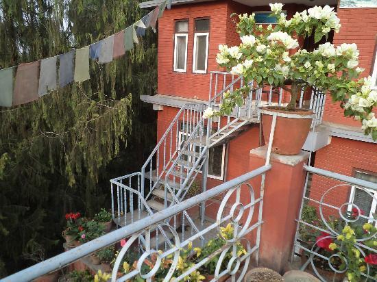 Hotel Blue Horizon: vivek@smartwebeasy.com