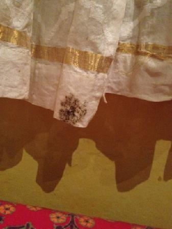Anki's Indian Restaurant: mould on curtain above our table