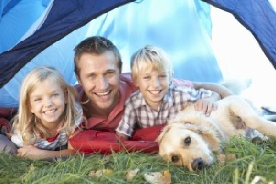 Lady's Mile Holiday Park: Pet Friendly Site