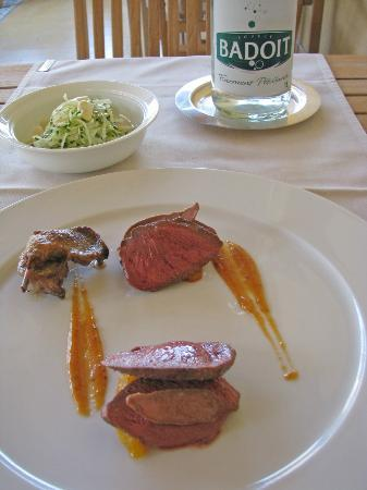 La Maison Jaune : Main Course:Roast Pigeon with Apricot Chutney Marmalade with a side dish of Fennel and Fresh Alm
