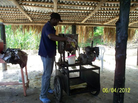 Runners Adventures - Santo Domingo City Tour: making sugar