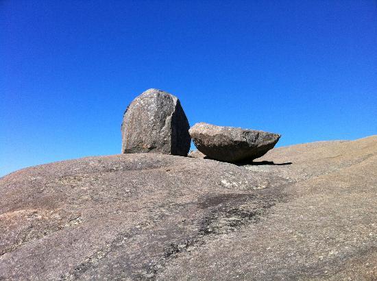 Paarl Mountain Nature Reserve: Paarl kleine Perlen