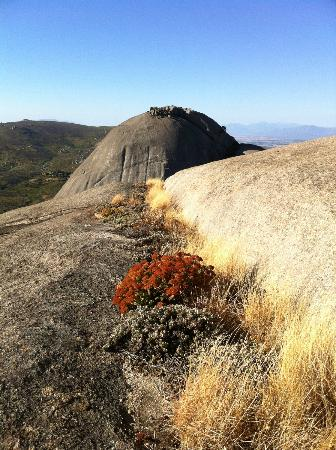 Paarl Mountain Nature Reserve: Paarl ganz oben