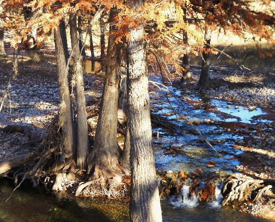 Cypress Frio Waters Leakey Texas Campground Reviews