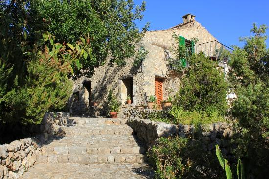 Finca Es Castell: View when you walk up the stairs