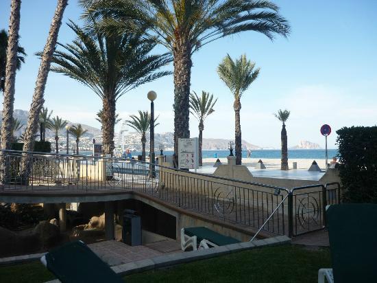 Hotel Kaktus Albir: El Paseo de las Estrellas