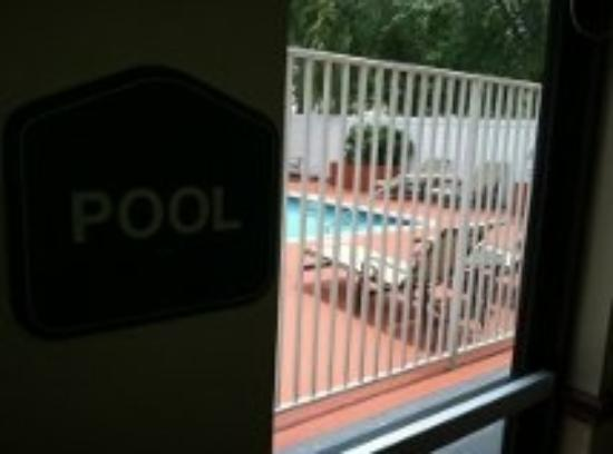 Best Western Plus Fort Lauderdale Airport/Cruise Port: The pool was a nice spot to hang out